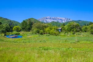 新緑の山里から望む大山南壁の写真素材 [FYI03349546]