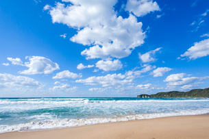 波寄せる琴ヶ浜の写真素材 [FYI03349615]