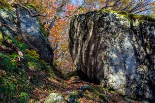 比婆山の千引岩の写真素材 [FYI03349630]