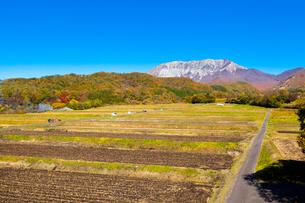 棚田と大山南壁の写真素材 [FYI03349647]