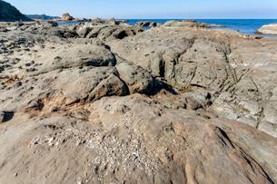 畳ヶ浦 千畳敷の化石の写真素材 [FYI03349674]