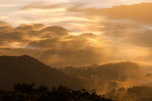 朝日に染まる高原の霧の写真素材 [FYI03349684]