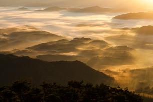 朝日に染まる高原の霧の写真素材 [FYI03349691]
