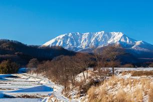 冬晴れの大山の写真素材 [FYI03349707]
