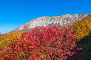 鍵掛峠から見る紅葉の大山南壁の写真素材 [FYI03349710]
