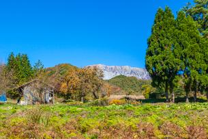 秋色の山里と大山南壁の写真素材 [FYI03349715]