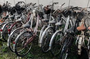 廃棄自転車の写真素材 [FYI03349718]