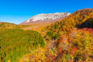 鍵掛峠から見る紅葉の大山南壁の写真素材 [FYI03349720]