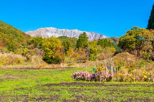 秋色の山里と大山南壁の写真素材 [FYI03349722]