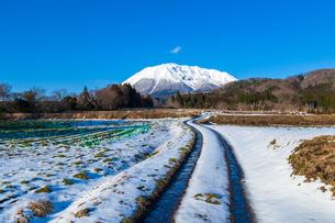 冬晴れの大山と轍道の写真素材 [FYI03349780]