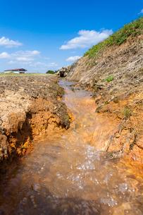 田んぼ道のそばを流れる引水の写真素材 [FYI03349812]