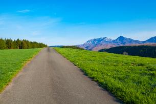 草原の道と大山の写真素材 [FYI03349815]