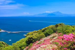 ツツジ咲く五本松公園と大山の写真素材 [FYI03349888]