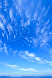 巻雲の写真素材 [FYI03349982]