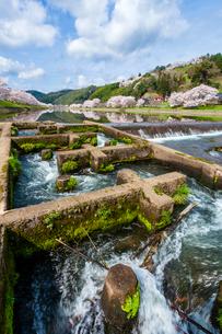 三刀屋川の魚道の写真素材 [FYI03350177]