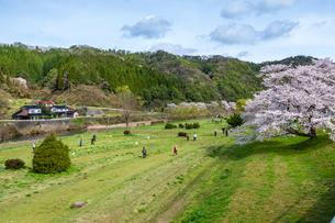 三刀屋川河川敷のグランドゴルフ場の写真素材 [FYI03350180]