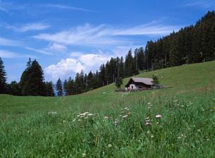 ハイジの山小屋の写真素材 [FYI03350195]