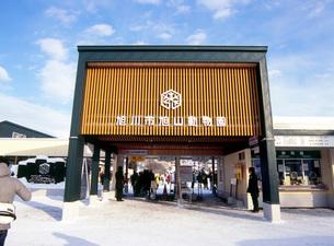 旭山動物園の写真素材 [FYI03350213]
