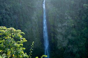 アカカ滝の写真素材 [FYI03350552]