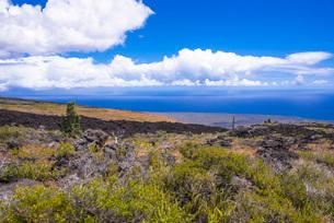 キラウエア火山の写真素材 [FYI03350559]