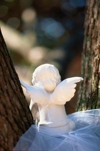 木の間の天使の人形の後姿の写真素材 [FYI03351109]