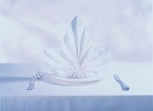 ナプキンの飾られたテーブルセッティングの写真素材 [FYI03351126]