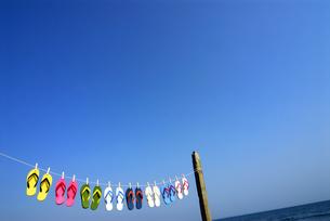 干されるビーチサンダルと青空の写真素材 [FYI03351307]
