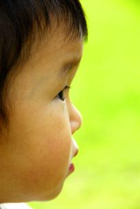 子供の横顔の写真素材 [FYI03351338]