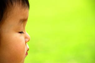 子供の横顔の写真素材 [FYI03351342]