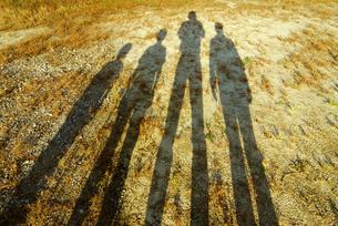4人家族の影の写真素材 [FYI03351349]