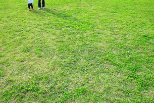 草原に立つ親子の足の写真素材 [FYI03351358]