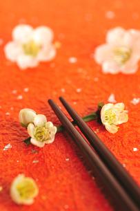 梅の花の箸置きと箸の写真素材 [FYI03351359]