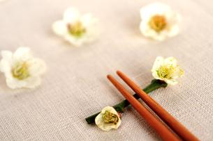梅の花の箸置きと箸の写真素材 [FYI03351361]