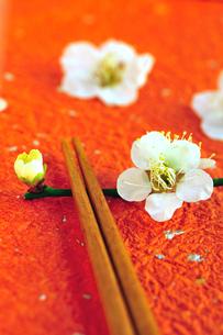 梅の花の箸置きと箸の写真素材 [FYI03351363]