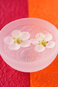 ボウルに浮かぶ梅の花の写真素材 [FYI03351366]