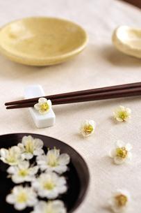 梅の花とテーブルセットの写真素材 [FYI03351369]