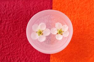 ボウルに浮かぶ梅の花の写真素材 [FYI03351372]