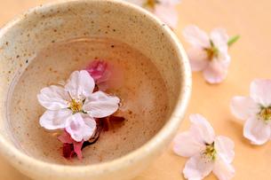 桜茶と桜の花の写真素材 [FYI03351380]