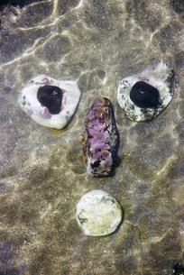 海で石を並べて作った顔の写真素材 [FYI03351631]