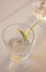 折鶴欄とグラスの写真素材 [FYI03352113]