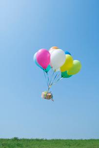 風船に運ばれるギフトボックスの写真素材 [FYI03352195]