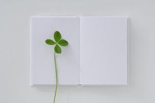 四葉のクローバーと白い本の写真素材 [FYI03352200]