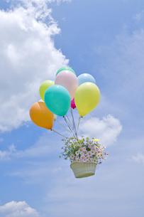 空を飛ぶ風船と花かごの写真素材 [FYI03352201]