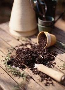 植木鉢からこぼれてスコップに入れた土の写真素材 [FYI03352238]