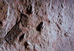携帯電話の化石・恐竜の足跡の写真素材 [FYI03352965]
