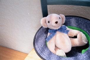 かわいいクマのぬいぐるみの写真素材 [FYI03353054]