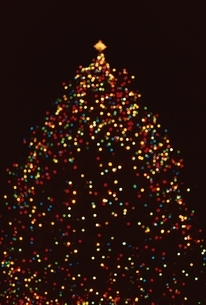 クリスマスイルミネーションのツリー ケベック カナダの写真素材 [FYI03353060]