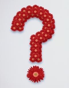 複数の花のクエスチョンマーク(赤)の写真素材 [FYI03353065]