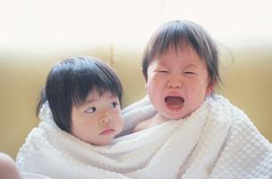 バスタオルにくるまり泣く男の子と女の子の写真素材 [FYI03353311]