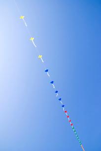 連凧と空の写真素材 [FYI03353922]
